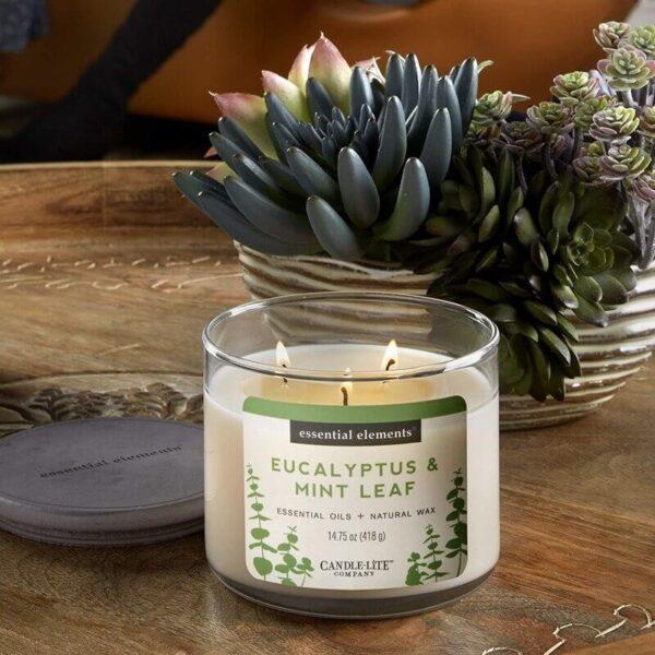 Candle-lite Essential Elements 3-Wick Glass Candle Jar 14,75 oz świeca zapachowa sojowa w szkle z olejkami eterycznymi 418 g ~ 45 h - Eucalyptus & Mint Leaf